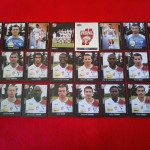 Série Panini foot 2008 (Collection ASNL-Infos)