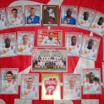 Stickers Panini ASNL 2011-2012