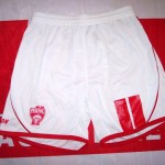 Short ASNL 2007-2008 (Collection ASNL-infos)