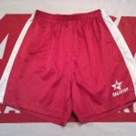 Short ASNL 2003-2004 (Collection : ASNL-infos)