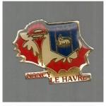 Pins ASNL-Le Havre