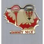 Pins ASNL-Nice