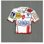 Pins ASNL maillot domicile - Saison 2007-2008
