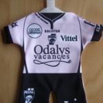 Mini maillot ASNL - Saison 2009-2010 verso [Collection privée tribasnl]