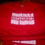 T-shirt (2013)