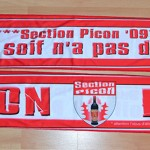 2009_Section Picon